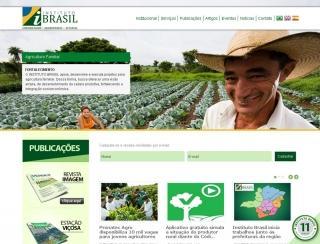 Instituto Brasil